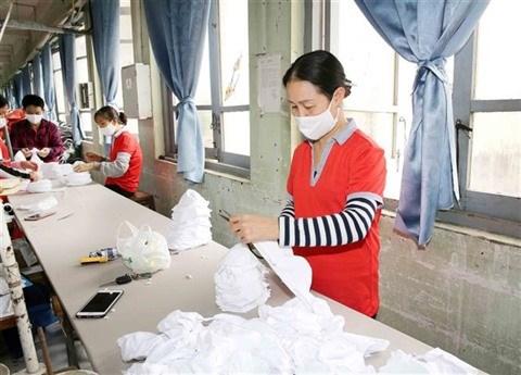 Les masques vietnamiens prets a etre exportes aux Etats-Unis et en Europe hinh anh 1