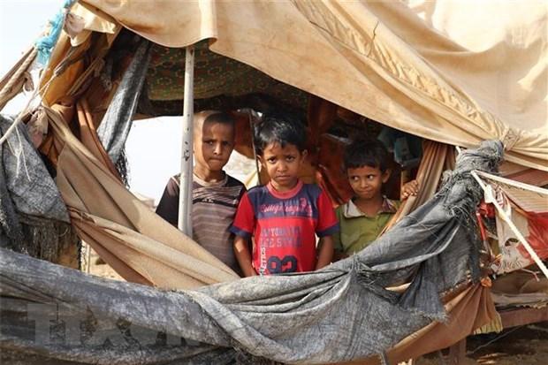 Le Vietnam demande aux parties au Yemen de mettre en pratique le cessez-le-feu hinh anh 1