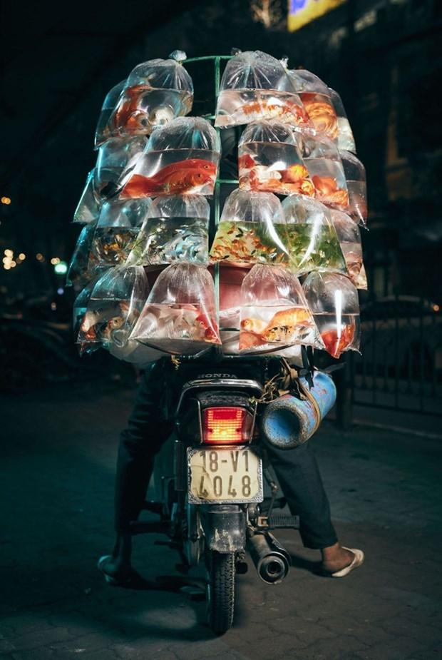 Une photo d'un vendeur de poissons d'ornement a moto primee aux Smithsonian Photo Contest hinh anh 1