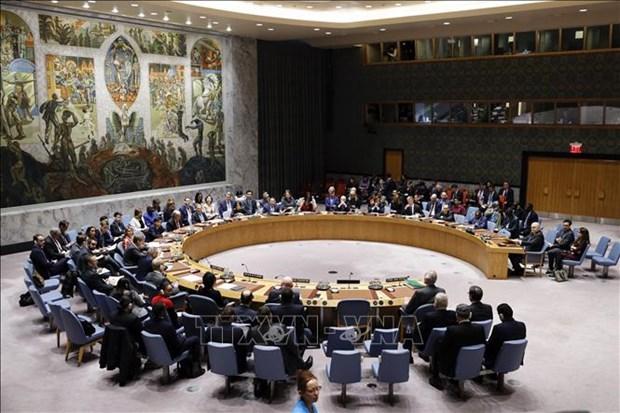 Palestine – Israel : le Vietnam reaffirme son soutien a la solution a deux Etats hinh anh 1