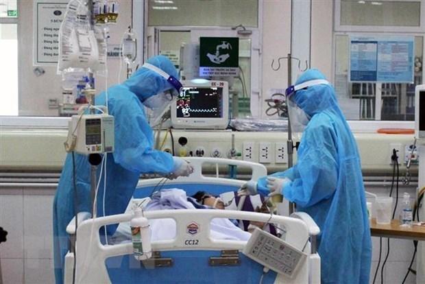 Coronavirus : aucun nouveau cas en 13 jours, deux redevenus positifs hinh anh 1