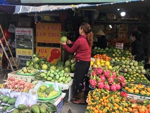 Tien Giang cherche a promouvoir le developpement des agrumes hinh anh 1