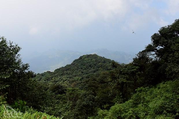 Parc national de Phia Oac - Phia Ðen: un des hauts lieux du tourisme de Cao Bang hinh anh 1