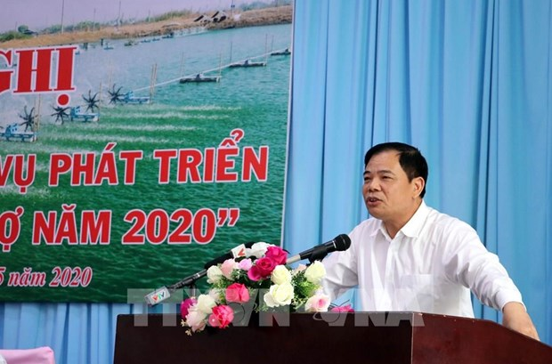 Le secteur de crevettes d'eau saumatre s'efforce d'atteindre 3,5 milliards de dollars d'exportation hinh anh 1