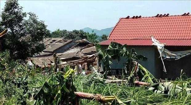 Les catastrophes naturelles causent des pertes de 3,6 millions de dollars dans la region du Nord hinh anh 1