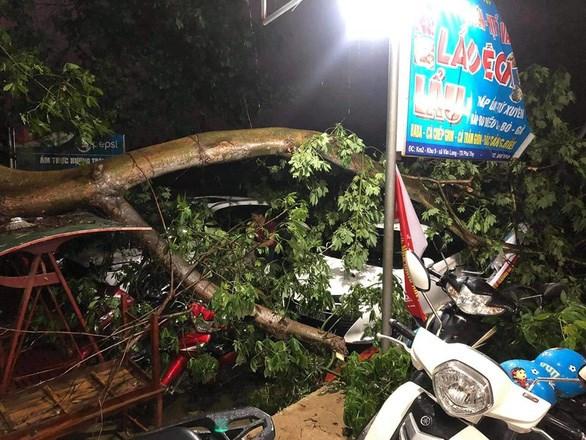 Des pluies torrentielles font un mort et 12 blesses dans les provinces du Nord hinh anh 1