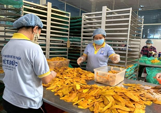 Croissance exceptionnelle des exportations de fruits et legumes bien transformes hinh anh 1