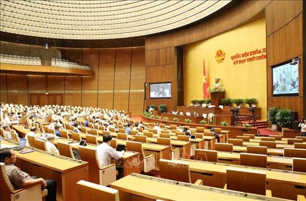 L'Assemblee nationale etudie plusieurs projets de loi hinh anh 1
