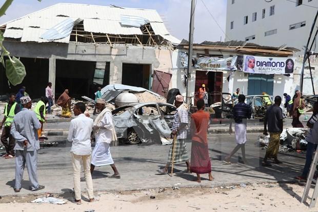 Le Vietnam exhorte les parties a faciliter des elections directes a une voix et a une seule personne en Somalie hinh anh 1