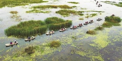Les zones humides, un patrimoine a preserver hinh anh 2