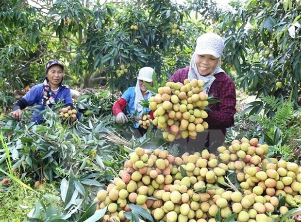 Le media allemand: le Vietnam optimiste sur ses perspectives economiques hinh anh 1