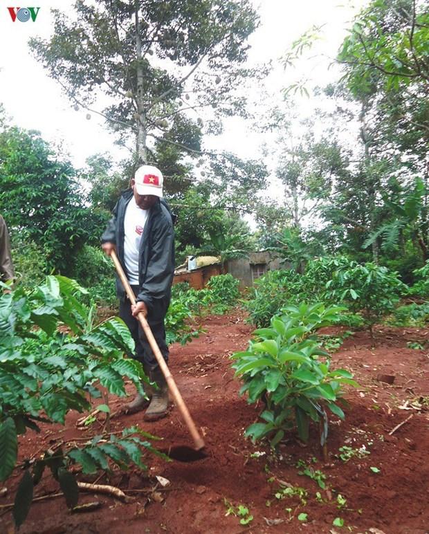 La polyculture, une reponse aux aleas du changement climatique hinh anh 2