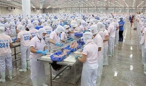 Reunir les efforts pour lutter contre la crise de l'emploi hinh anh 1
