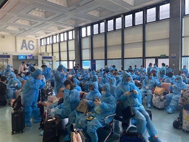Plus de 340 Vietnamiens rapatries de Taiwan (Chine) hinh anh 1