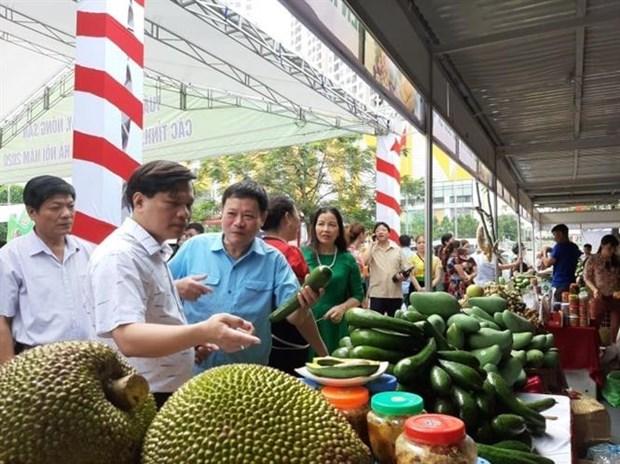 Hanoi : Semaine des fruits et produits agricoles de villes et provinces hinh anh 1