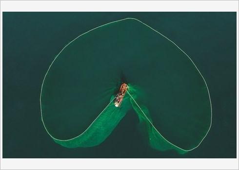 La beaute de la peche aux anchois au Vietnam celebree par le Daily Mail hinh anh 3