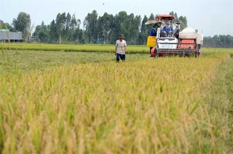 Le Vietnam face au defi du declin de la biodiversite hinh anh 1