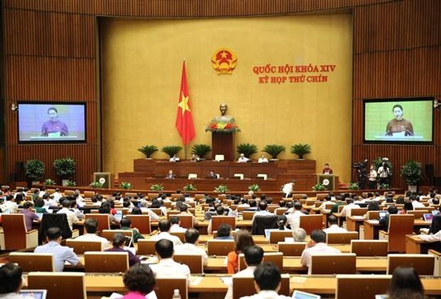 L'EVFTA profitera au secteur agricole du Vietnam, selon l'eurodepute Marc Tarabella hinh anh 2