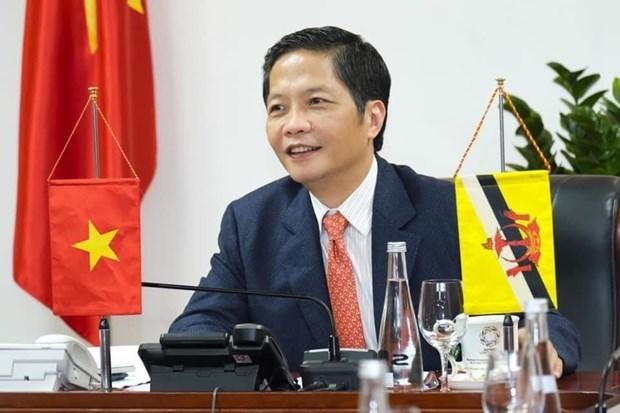 Le Vietnam et le Brunei s'efforcent d'ouvrir rapidement les routes commerciales hinh anh 1