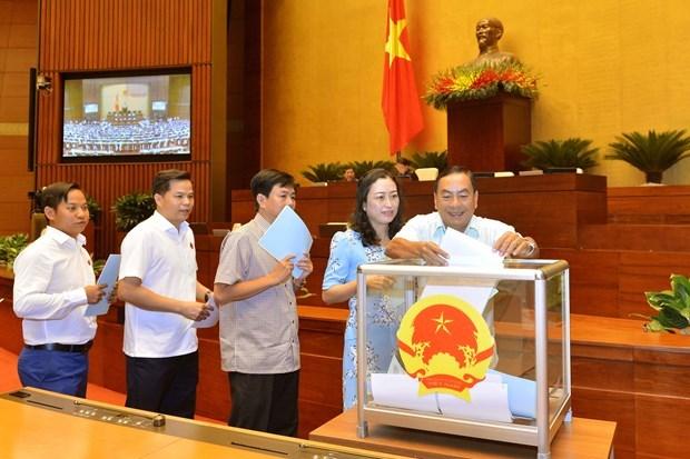 L'AN approuve les vice-presidents et membres du Conseil electoral national hinh anh 1