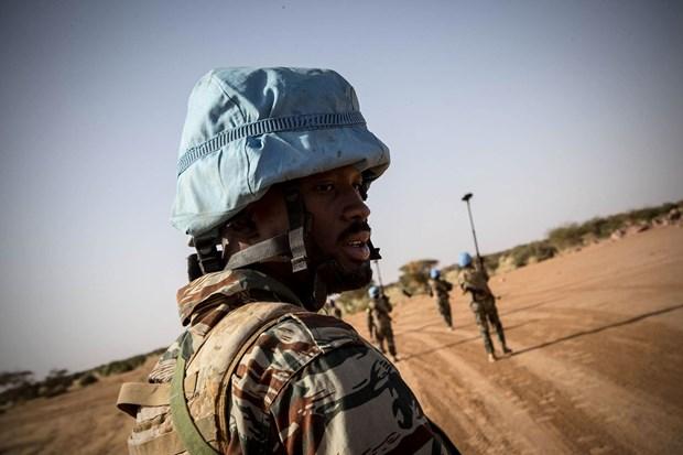 Mali : le Vietnam appelle a proteger les civils et a relever les defis hinh anh 1