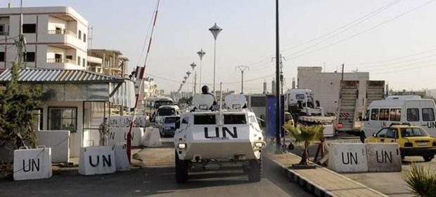 Golan : le Conseil de securite examine la prorogation du mandat de la FNUOD hinh anh 1