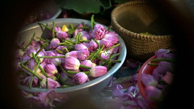 Le the au lotus ou l'elegance hanoienne hinh anh 2