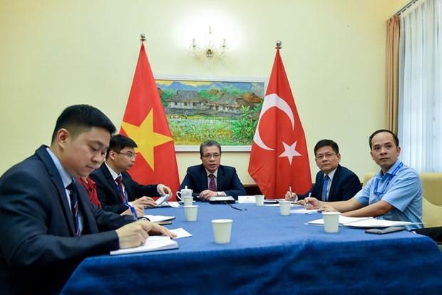 Vietnam-Turquie: entretien telephonique de vice-ministres des Affaires etrangeres hinh anh 1