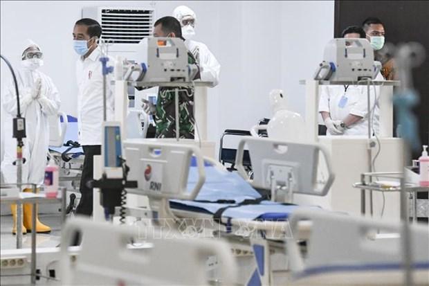 Les dirigeants de l'ASEAN determines a vaincre la pandemie hinh anh 1