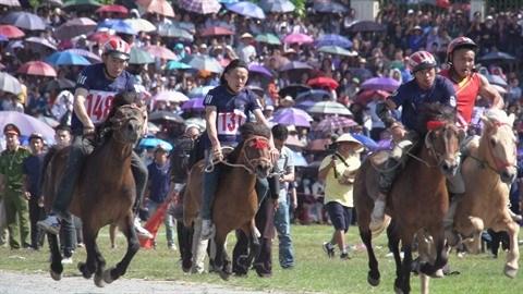 L'originalite des courses de chevaux traditionnelles de Bac Ha hinh anh 1