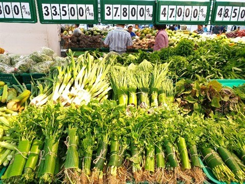 Les produits verts, une nouvelle tendance de vie hinh anh 1
