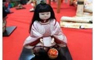 L'exposition de poupees japonaises traditionnelles revient a Hanoi hinh anh 1