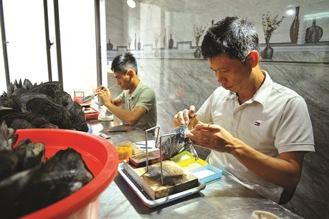 Ninh Binh facilite l'acces des PME au financement bancaire hinh anh 1