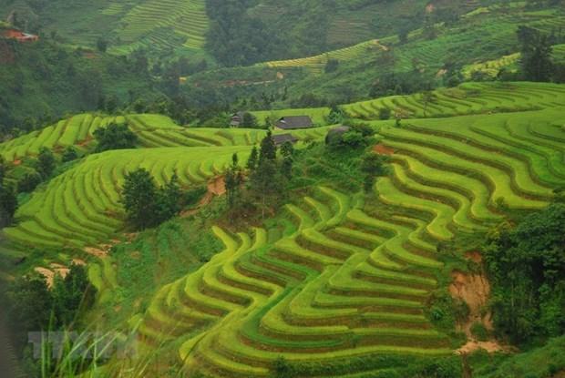 Les associations cooperent pour promouvoir le tourisme local hinh anh 1