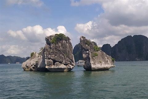 Une experience inoubliable pour les etudiants francophones au Vietnam hinh anh 2