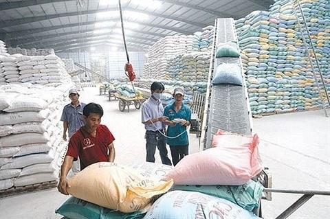 Le secteur agricole ne change pas son objectif de croissance pour 2020 hinh anh 1