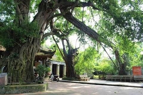 Pho Hien, le celebre site historique de Hung Yen hinh anh 2