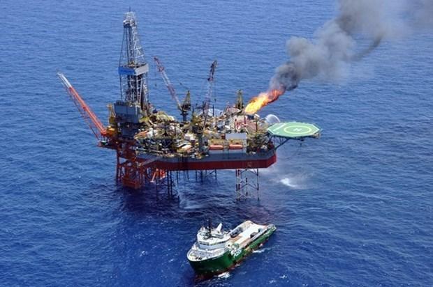 PetroVietnam acheve l'augmentation des reserves de petrole et de gaz hinh anh 1