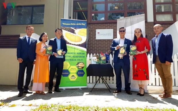 Le durian vietnamien a la conquete du marche autralien hinh anh 1
