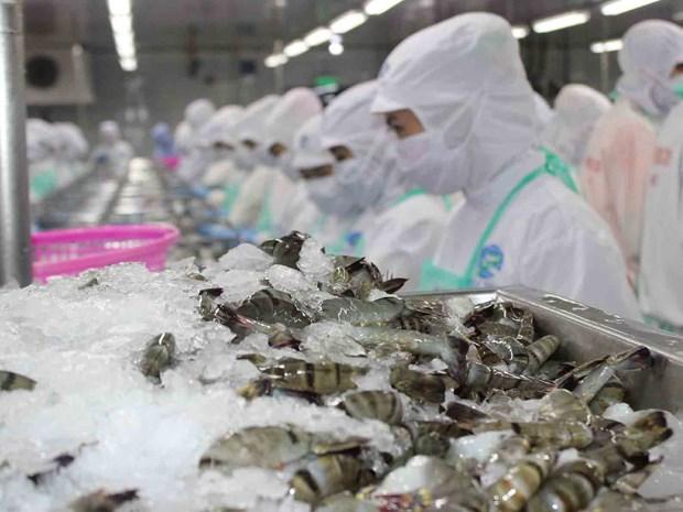 Les exportations de crevettes bondissent en sept mois hinh anh 1