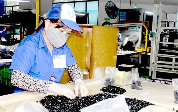 De nombreuses entreprises taiwanaises choisissent Dong Nai hinh anh 1