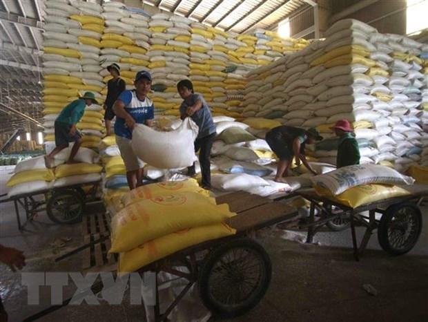 L'Afrique - un marche potentiel pour le riz vietnamien hinh anh 1