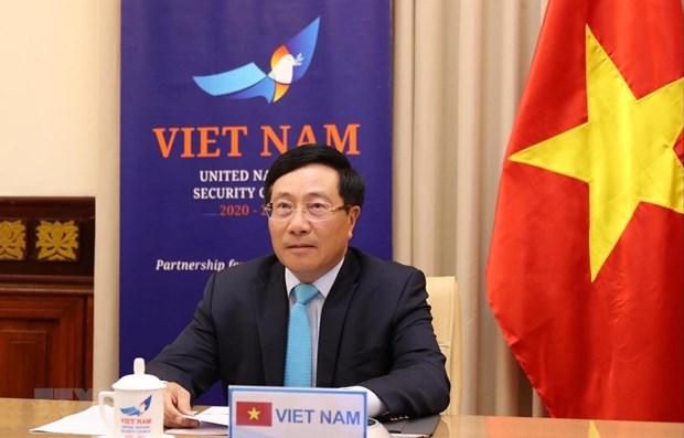 Le Vietnam au debat sur les pandemies et les defis du Conseil de securite hinh anh 1