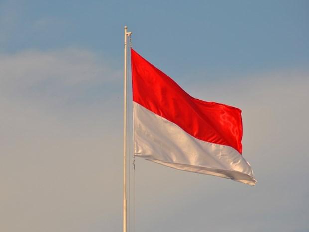 Celebration de la 75e anniversaire de la Fete nationale d'Indonesie a Hanoi hinh anh 1