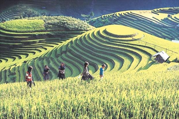 A Mu Cang Chai, l'ecotourisme rime avec la preservation de l'identite culturelle hinh anh 2