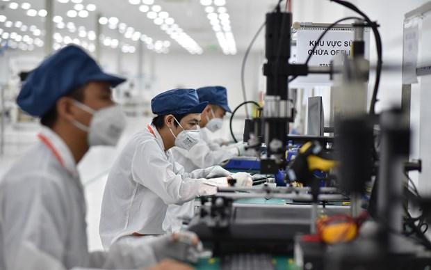 Le commerce entre le Vietnam et l'Inde devrait atteindre 15-20 milliards de dollars hinh anh 1