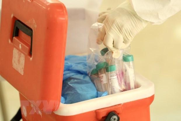 COVID-19 : sept nouveaux cas detectes a Da Nang hinh anh 1