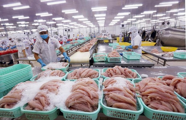 Les exportations de produits aquatiques devraient atteindre 8,3 milliards de dollars en 2020 hinh anh 1