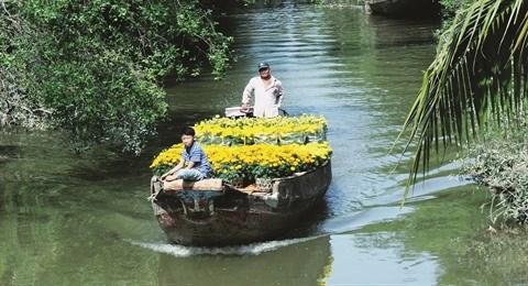 Le delta du Mekong vous attend sous un nouvel aspect hinh anh 1