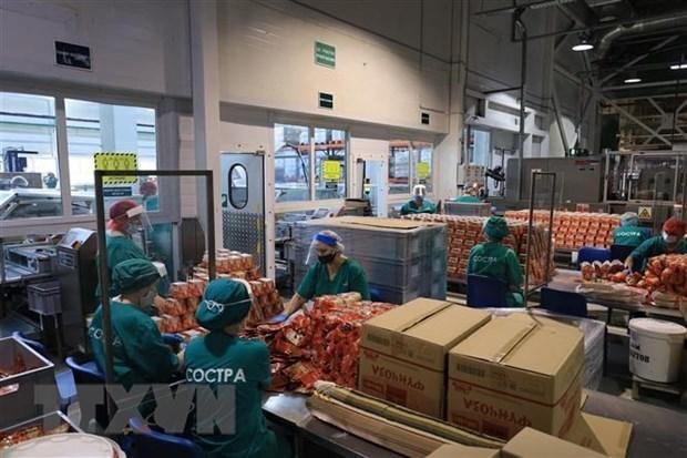 Les entreprises vietnamiennes laissent une bonne impression malgre le COVID-19 hinh anh 1